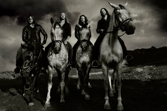 bombus_horses01